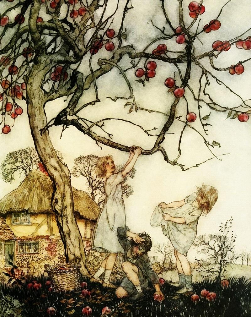 Immagine Frutti antichi per sito e-green